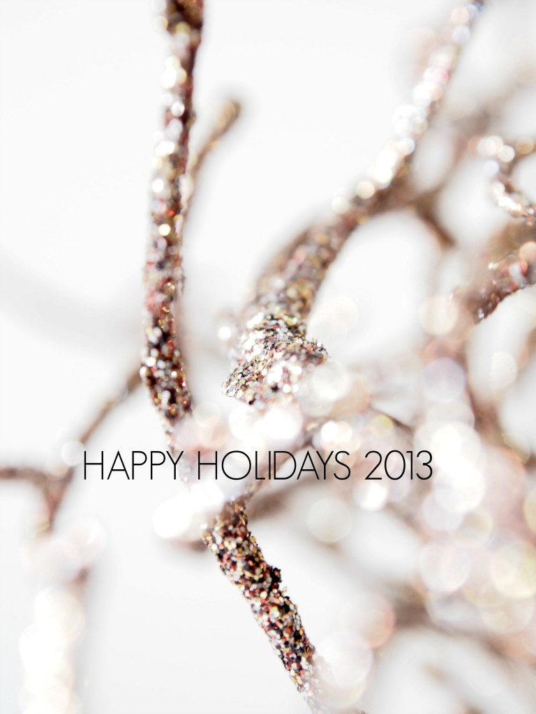 Happy Holidays 2013