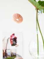 DIY Floating Plant Vases